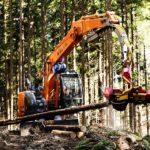林業の現場を紹介する記事のアイキャッチ画像