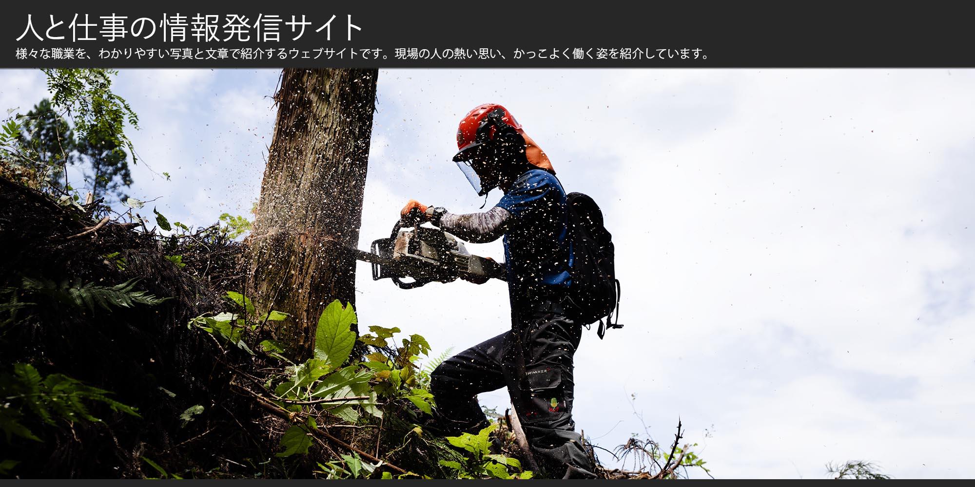 働く人のイメージ画像-林業の写真